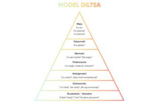 Zastosowanie piramidy Diltsa w Twoim życiu